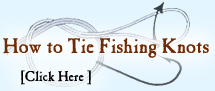 How to tie fishing knots including link to animated knots by Grog.